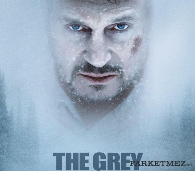Hayatta Kalma Filmleri - The Grey